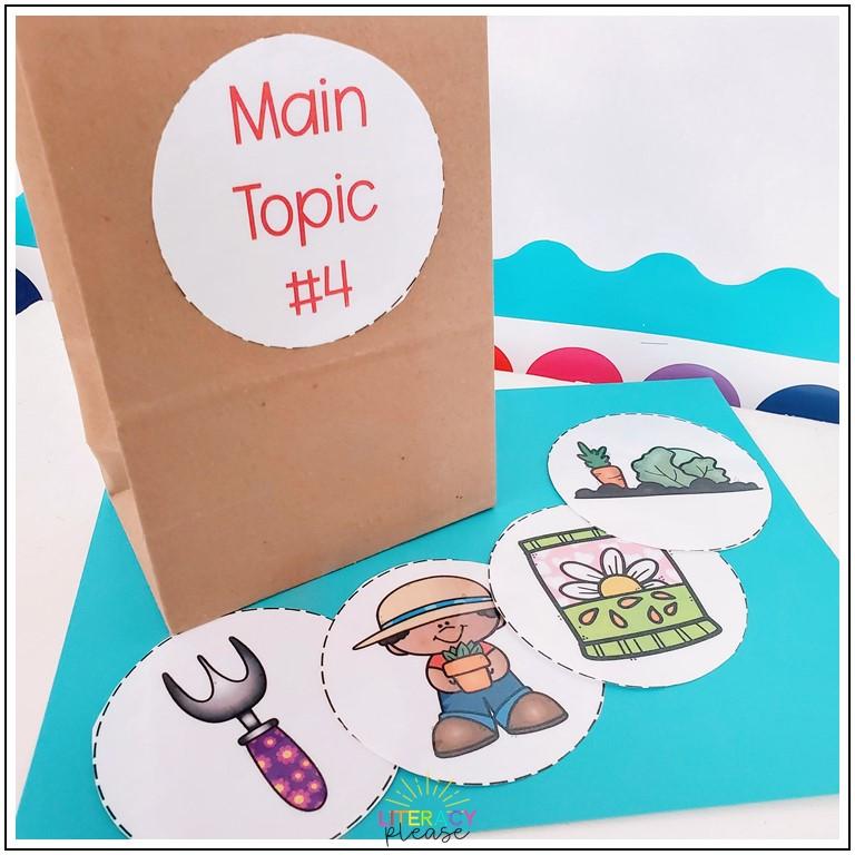 main idea bag
