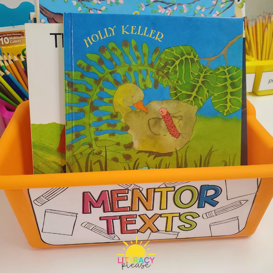 Google Mentor Text Writing Workshop Classroom Organization